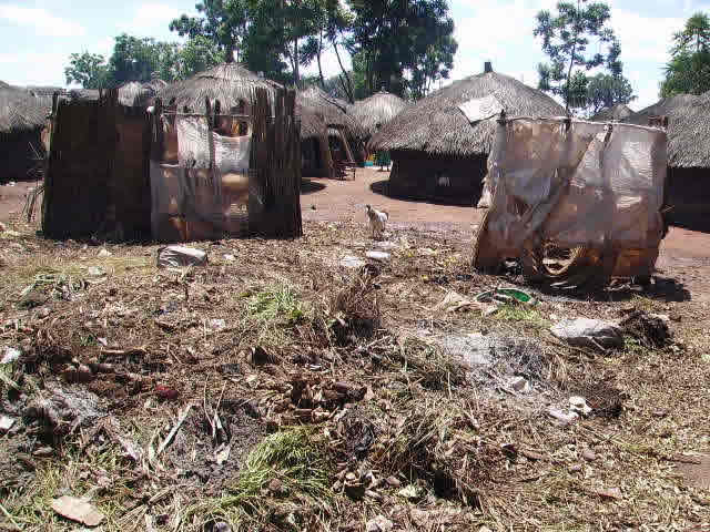 Some Areas of IDP Need Work