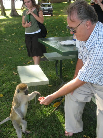 Monkey Taking Food from Bill's Hand as Suzy Watches