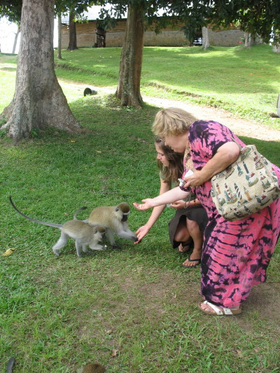Ashley and Ann Feeding Two More Monkeys