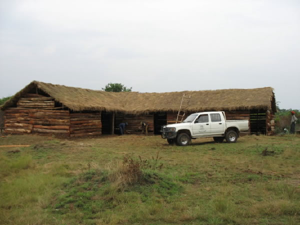 Temporary Primary Schol with its Thatched Roof