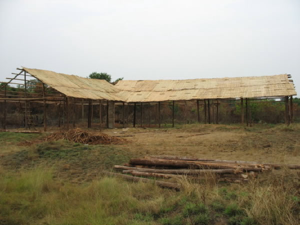 Papyrus Mats Form First Layer of Temporary School's Roof