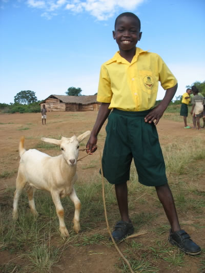 EWCV Child Wearing New School Uniform and Leading Baby Goat