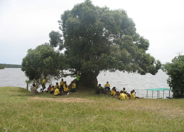 EWCV Children Picnicking in the Shade of a Huge Tree